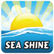 Tidal Wave Auto Spa Service: Sea Shine